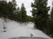 snowy_road_part_3