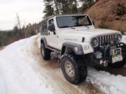 roger_in_snow