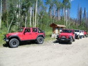 red_jeeps