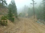 foggy_start