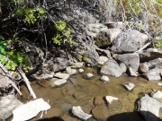 brush_creek_crossing_part_2