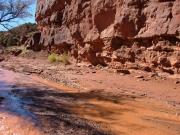 water_in_the_desert