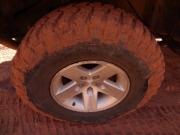 cinnamon_tire