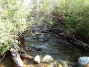 river_rocks