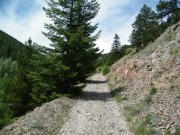 early_climb