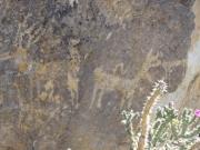 petroglyphs_part_4