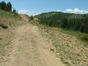 left_to_the_mine_or_right_to_the_trail