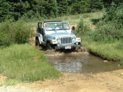 mike_in_muddy_water