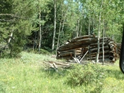 old_cabins_part_2