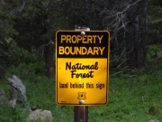 forest_boundary_sign