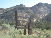 dixie_national_forest