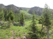piney_ridge_part_6