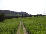 toward_piney_ridge