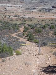 former_trail