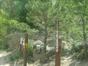 forest_service_sign_at_trailhead