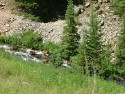 creek_in_pomeroy_gulch