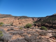 negro_bill_canyon_part_5