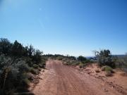 dirt_track