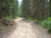 start_of_the_trail