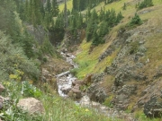 uncompahgre_river_part_1