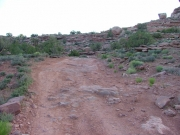 rocky_trail_near_the_end