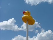 rubber_ducky