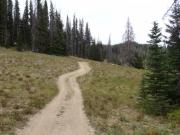 little_trail