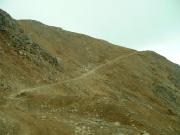 up_radical_hill