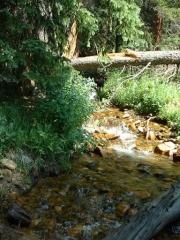 lamping_creek