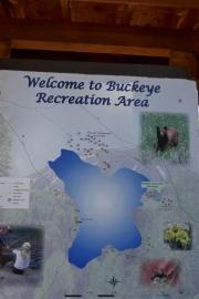 buckeye_sign_3