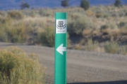 green_trail_sign