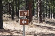 trail_378_in_manti-la_sal