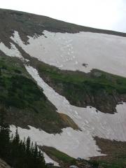ski_tracks