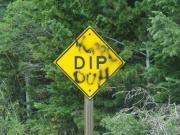 dip_duh