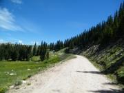 sunny_trail