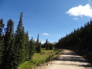 approaching_timberline