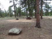 campground_part_5