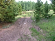 rutted_hill