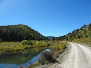 trail_next_to_ponds