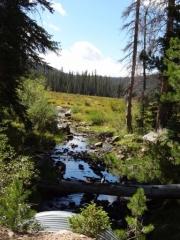 sawmill_creek