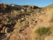 rock_slide