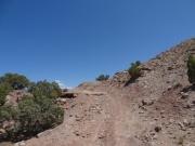 loose_climb