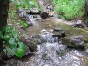 sevenmile_creek