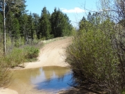 through_the_creek
