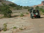 wayne_on_the_trail