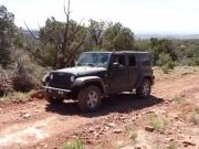 julie_in_the_desert