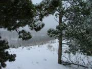snowy_trail_part_4