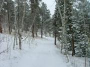snowy_trail_part_8