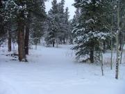 snowy_trail_part_9