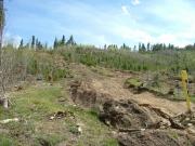 stump_hill